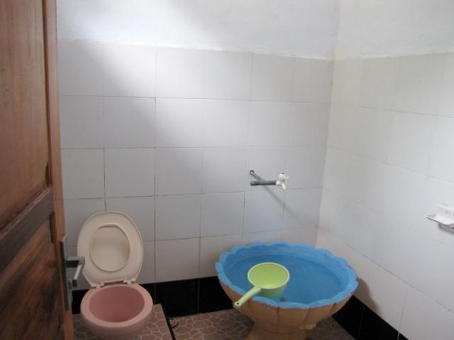 туалет азия2
