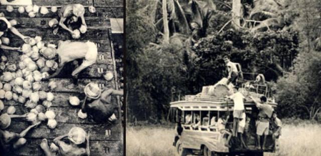 Koh-Samui-history