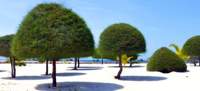 1671_Malibu-Beach-Koh-Phangan-1