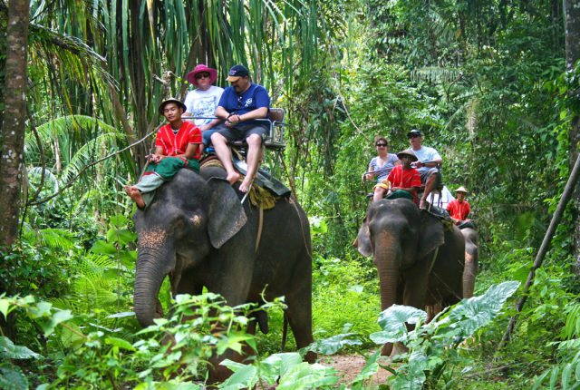 top-elephant-trekking-camps