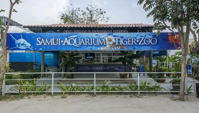 аквариум+зоопарк